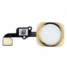 Кнопка Home (домой) со шлейфом для iPhone 6S золотая